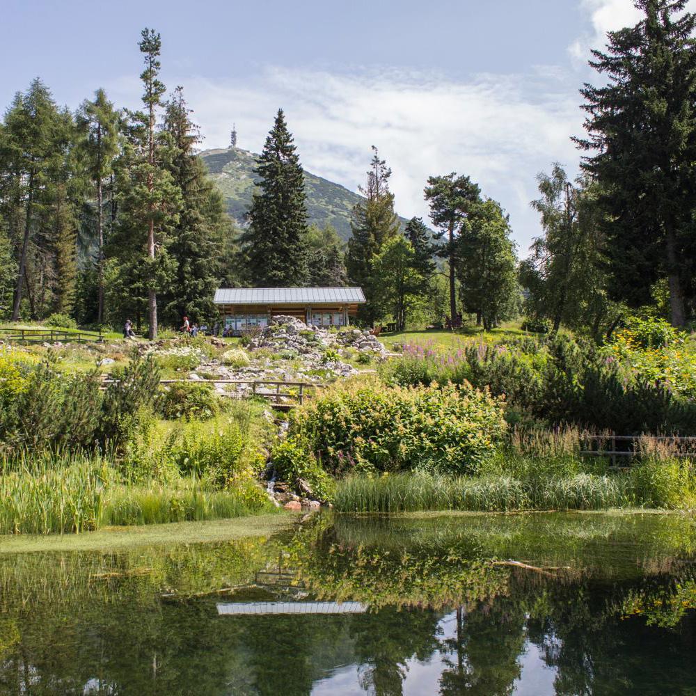 Giardino Botanico Alpino